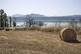 Lago artificiale di Montecotugno