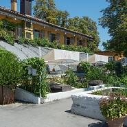 Le Serre dei Giardini Margherita