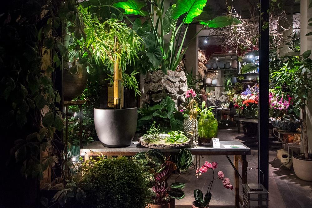 Bologna Design Week, settembre 2019 Design Night   Progetto #CENOTE. Corpi viventi in simbiosi   Flò Fiori e Acquaponic Design Flò Fiori, via Saragozza 23/b, Bologna