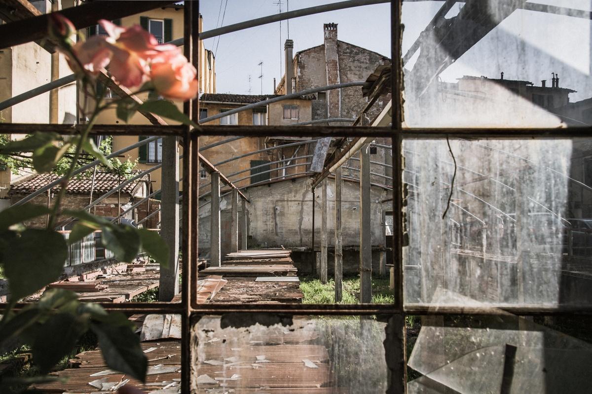 Bologna, Orti di via Orfeo (maggio 2016)