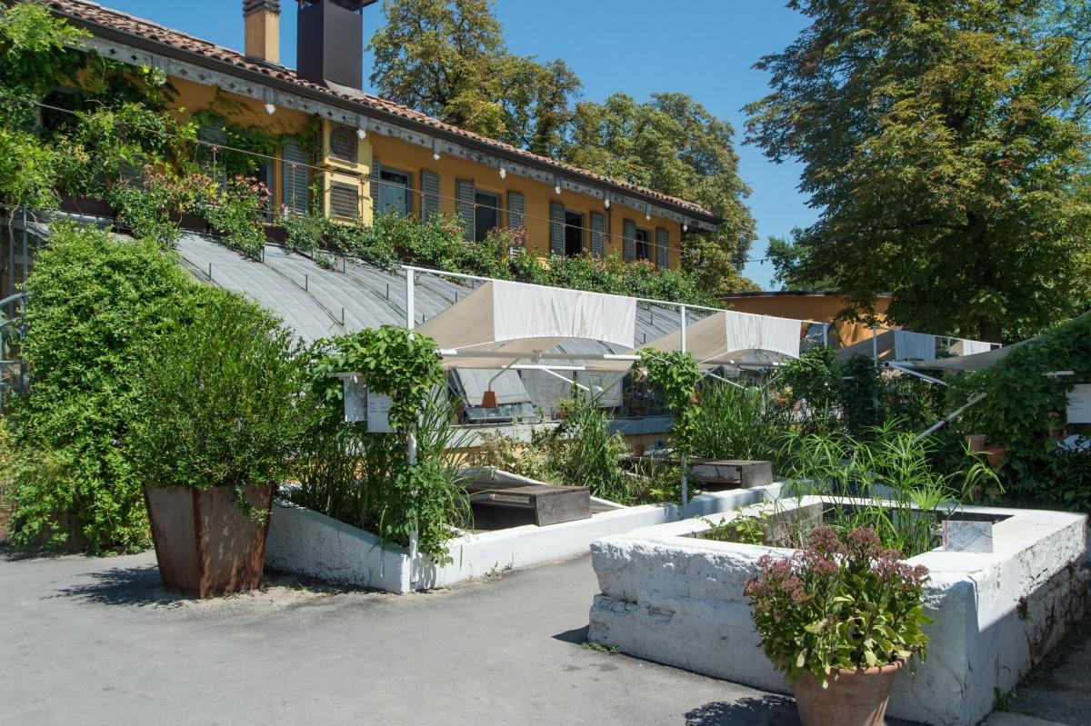 Le Serre dei Giardini Margherita luglio 2019