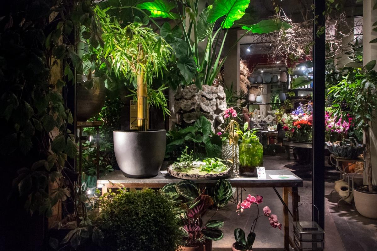 Bologna Design Week, settembre 2019 Design Night | Progetto #CENOTE. Corpi viventi in simbiosi | Flò Fiori e Acquaponic Design Flò Fiori, via Saragozza 23/b, Bologna