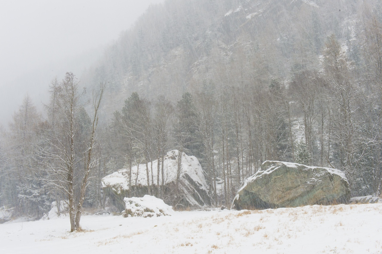Appena dipinto - Periasc- Val D'Ayas - Aosta  Inverno 2016
