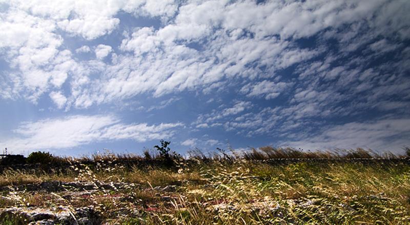 in un contesto territoriale battuto dal sole e dal vento caldo, come quello della campagna ragusana...