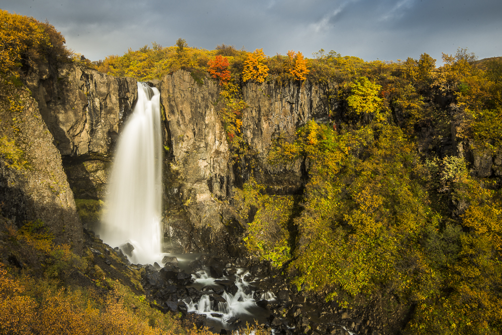Around Svartifoss- autunno 2015